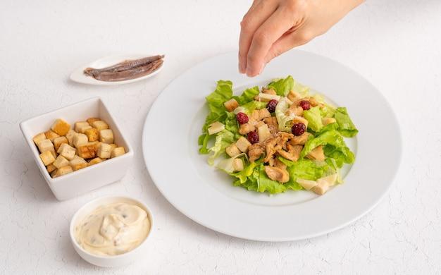 Insalata con pane tostato, acciughe e salsa su pianta bianca e sfondo bianco