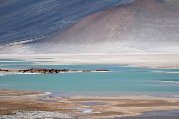 Salar de talar altopiano laghi salati all'altitudine di 3950 m delle ande cilene settentrionali del cile chi