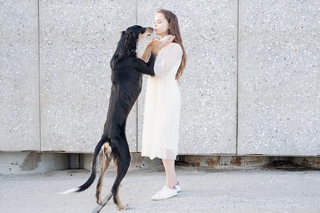 Cane di saluki che sta con la giovane donna attraente in vestito bianco. città. su due gambe. levriero persiano. concetto di cura degli animali domestici. amore e amicizia tra uomo e animale.