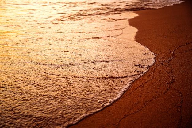 Spiaggia di sabbia al mattino nella calda alba