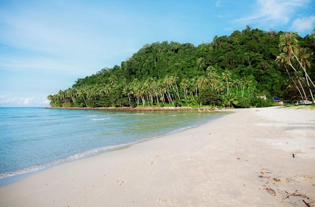 Spiaggia di sabbia in mare