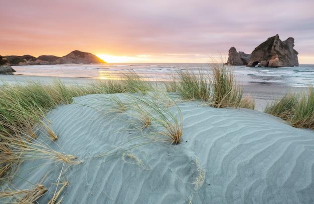 Dune di sabbia sulla spiaggia dell'oceano pacifico, nuova zelanda