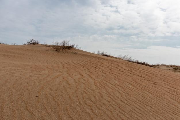 Dune di sabbia contro la luce del tramonto sulla spiaggia