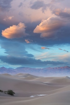 Dune di sabbia in california, usa. bellissimo paesaggio naturale