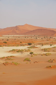Dune di sabbia nel deserto del namib, africa, namibia