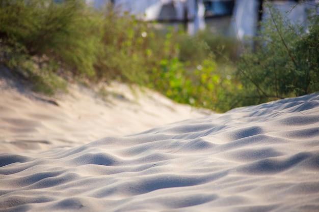 Colline sabbiose sulla spiaggia
