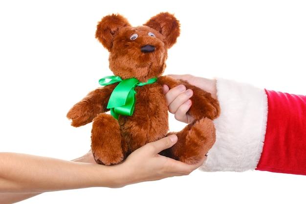 Mano di babbo natale che tiene orso giocattolo isolato sul muro bianco