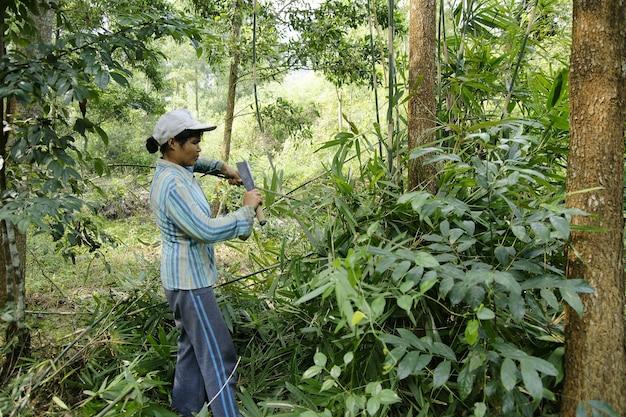 Sapa, vietnam - agricoltori vietnamiti e pescatori nei villaggi rurali.