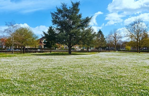 Saumur città vista primaverile con prato in fiore (francia)
