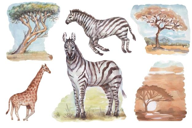 Savannah africa zebra giraffa safari animali acquerello disegnato a mano illustrazione