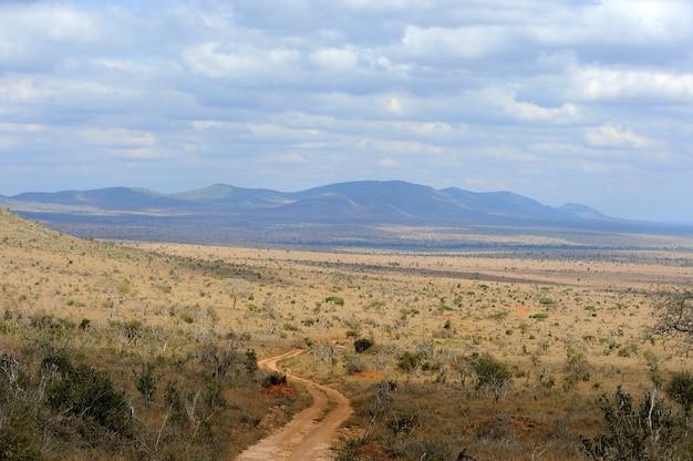 Paesaggio della savana nel parco nazionale del kenya
