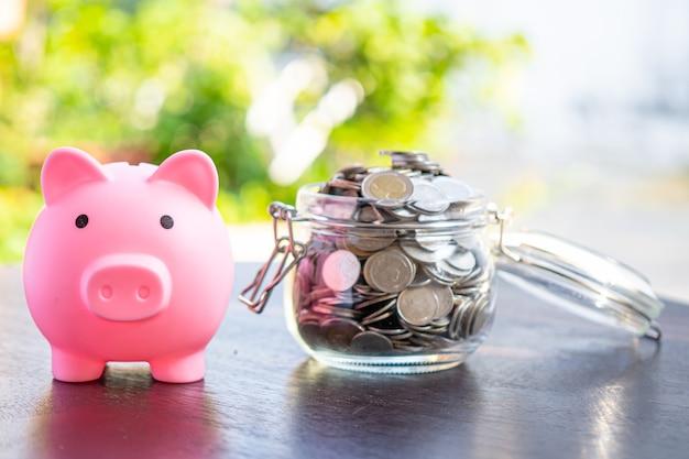 Risparmia denaro monete in vaso di erba con salvadanaio.