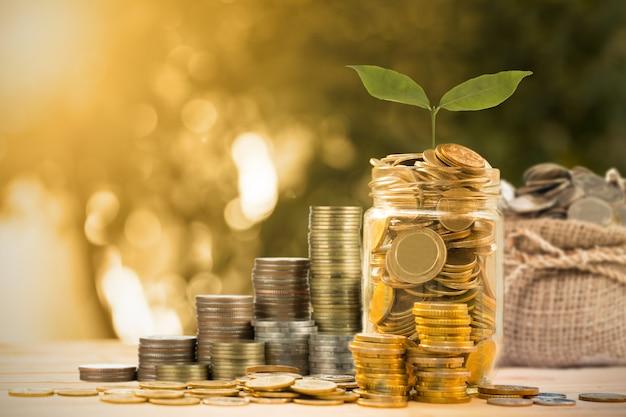 Risparmia denaro con monete per far crescere la tua attività