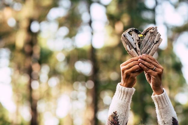 Salva il concetto di giorno della natura e della terra con un paio di mani adulte che prendono un cuore di legno e un piccolo fiore giallo con una bellissima foresta di bokes sfocati