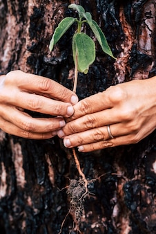 Salva il pianeta terra
