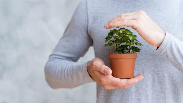 Salva il mondo proteggendo la natura. composizione concettuale. pianta domestica assicurata nelle mani dell'uomo.
