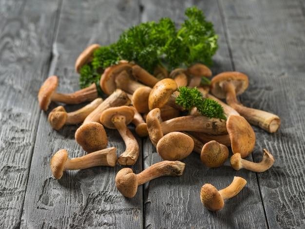 Sparsi funghi di bosco autunnale sul tavolo e un coltello con manico in legno