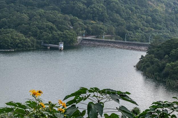 Paesaggio vicino al bacino idrico nei giorni nuvolosi