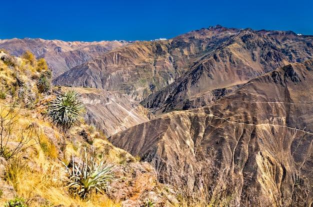 Scenario del canyon del colca in perù, uno dei canyon più profondi del mondo