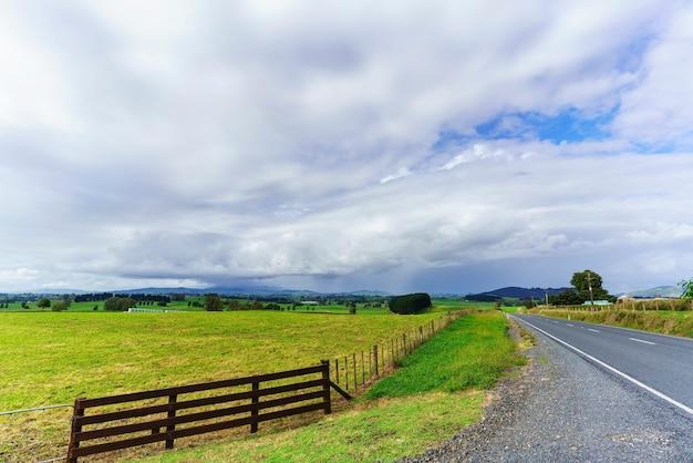 Scenario di campagna nell'isola del nord della nuova zelanda