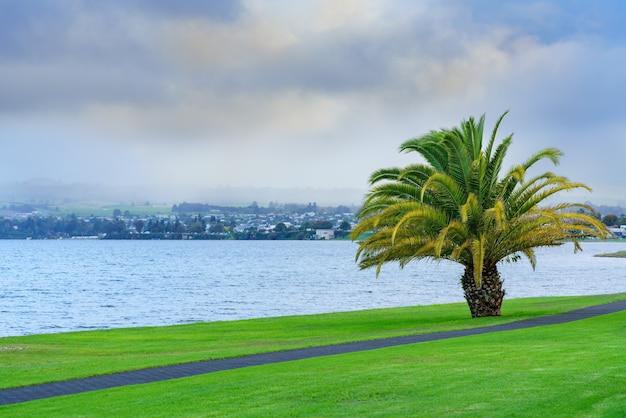 Scenario del lago taupo al mattino, isola del nord della nuova zelanda