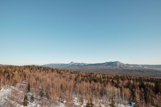 Scenario di paesaggio con montagne e foreste di cielo blu