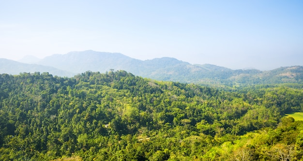 Scenic montagne verdi anb cielo blu, ceylon. paesaggio dello sri lanka