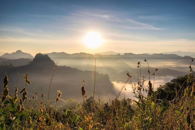 Prato scenico del paesaggio sulla collina della nebbia nella mattina, baan jabo, mae hong son, tailandia