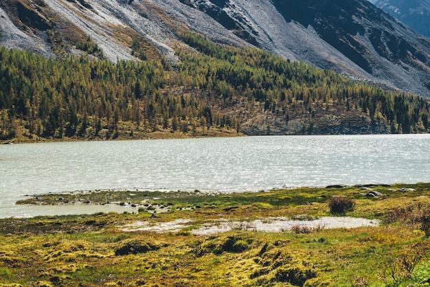 Paesaggio panoramico con splendore sul lago di montagna tra erbe e muschi con vista sulla montagna con foreste e rocce in una giornata di sole autunnale. splendido scenario di montagna con sole splendente sulla superficie dell'acqua del lago.