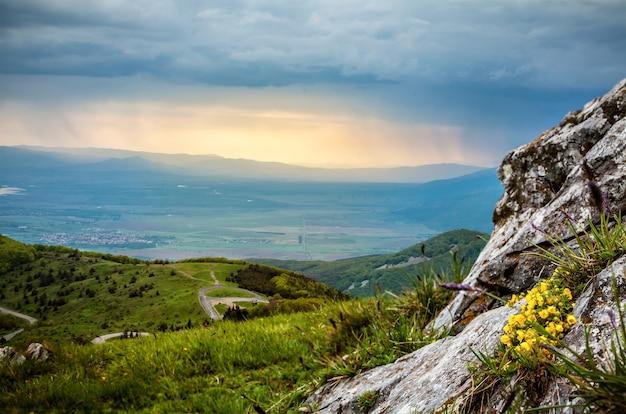 Foto panoramica di pioggia in montagna con pietre e fiori