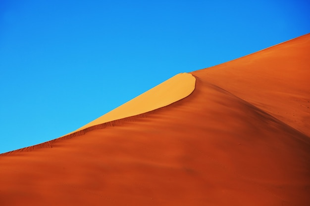 Dune di sabbia sceniche nel deserto