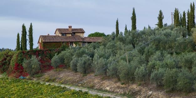 Vista panoramica di una casa nel villaggio con vigneto, toscana, italia