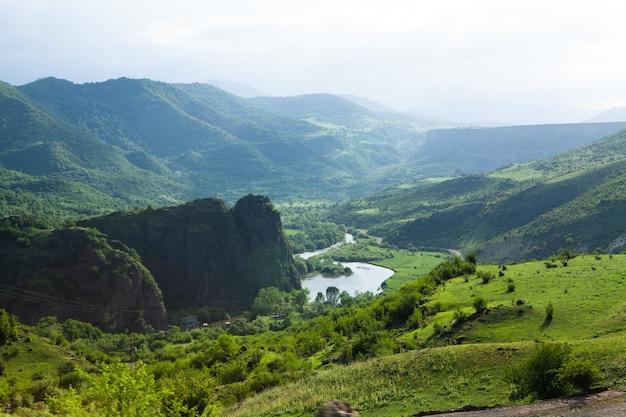 Vista panoramica del fiume vicino alla foresta