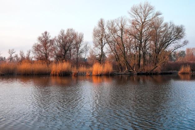 Vista panoramica con riflesso sul lago. stagno la mattina presto