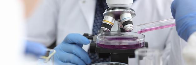 Scienziato con occhiali e guanti di gomma guarda attraverso il microscopio dove viene versato il liquido rosa