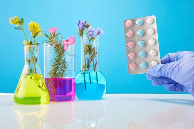Le mani dello scienziato tengono le pillole. provette con piante su una parete blu. concetto di farmaco organico naturale e ricerca di laboratorio.