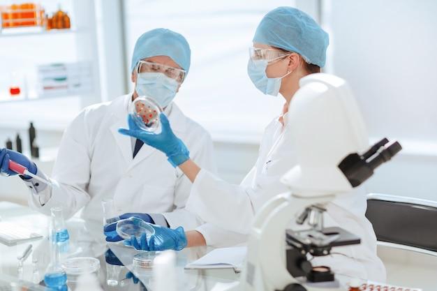 Scienziati che discutono le loro ricerche in laboratorio
