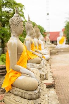Scultura di buddha in file con veste gialla avvolta attorno a ciascuna