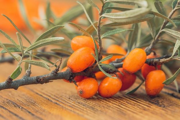 Ramo di olivello spinoso su fondo in legno in dettaglio