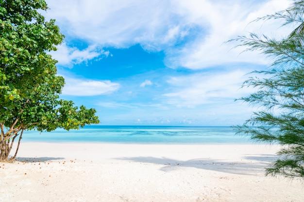 Il mare e la spiaggia dell'acqua libera hanno un'estate di festa che si distende e viaggia il cielo luminoso koh lipe tailandia
