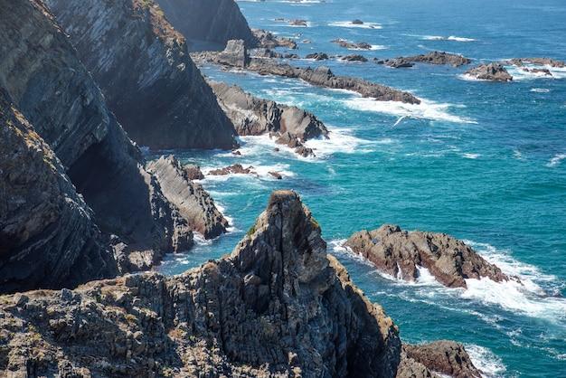 Costa del mare con formazioni rocciose e onde