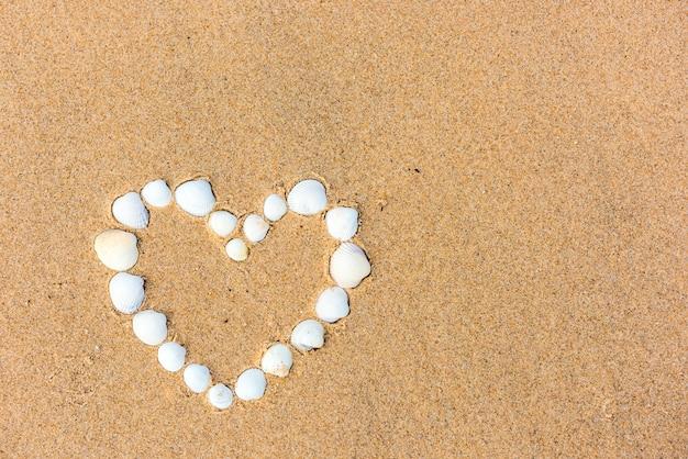 Cuore di conchiglia di mare sulla spiaggia di sabbia