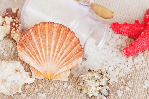Impostazione del trattamento termale di mare con guscio di pettine di capesante