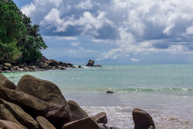 Vista mare, scoglio sulla spiaggia e alberello