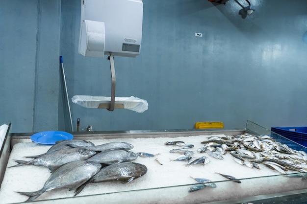 Dipartimento di frutti di mare presso il negozio di alimentari
