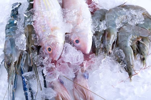 Frutti di mare su ghiaccio al mercato ittico.