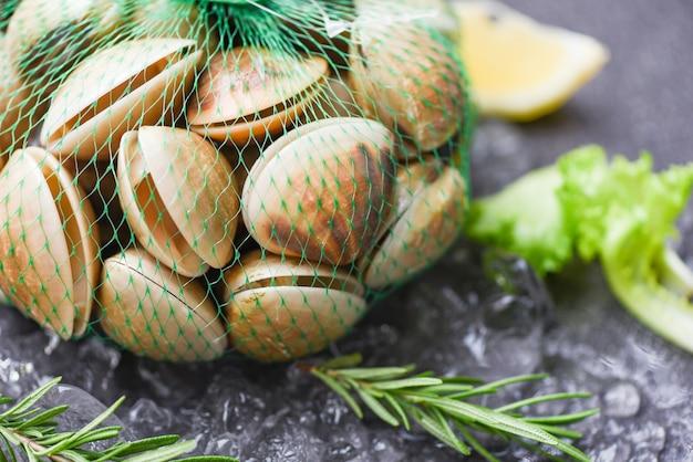 Frutti di mare crostacei su ghiaccio congelati al ristorante / vongole fresche con ingredienti di erbe per insalata, conchiglia smaltata, vongole di mare