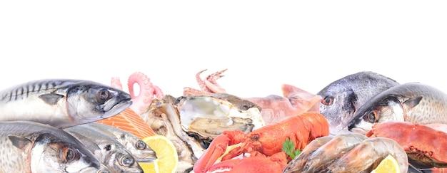 Frutti di mare su sfondo bianco