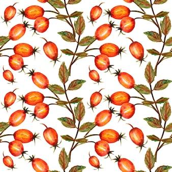 Modello senza cuciture ramo di rosa canina con tre foglie di bacche rosse