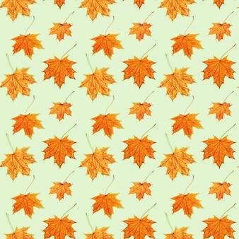 Modello senza cuciture fatto di foglie autunnali secche su sfondo verde chiaro